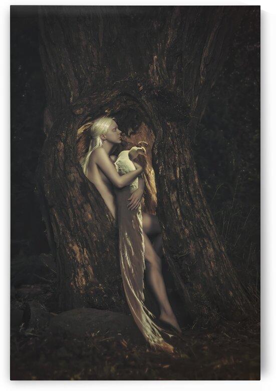 The Tree Hollow by Artmood Visualz