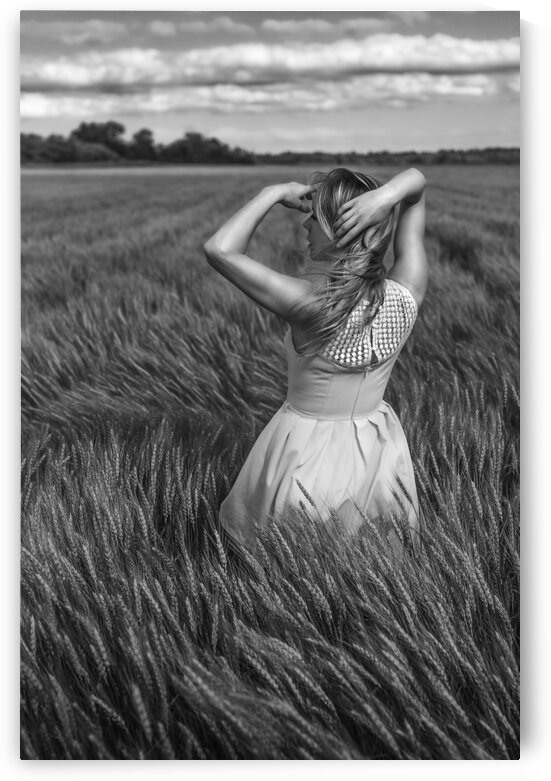 Harvest VI by Artmood Visualz