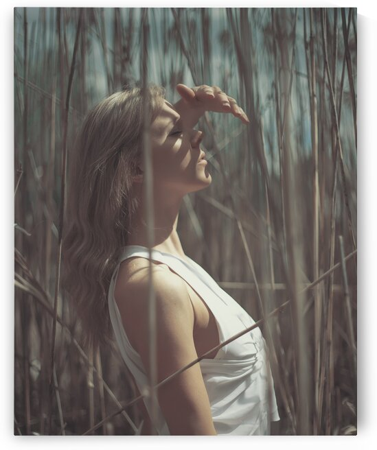 Roseau III by Artmood Visualz
