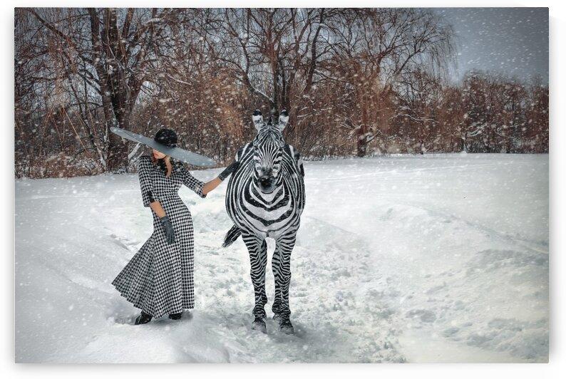 Patterns by Artmood Visualz