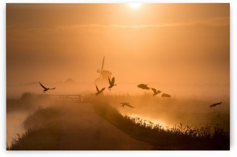 Sunrise Flight by 1x