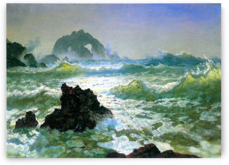 Seal Rock 2 by Bierstadt by Bierstadt