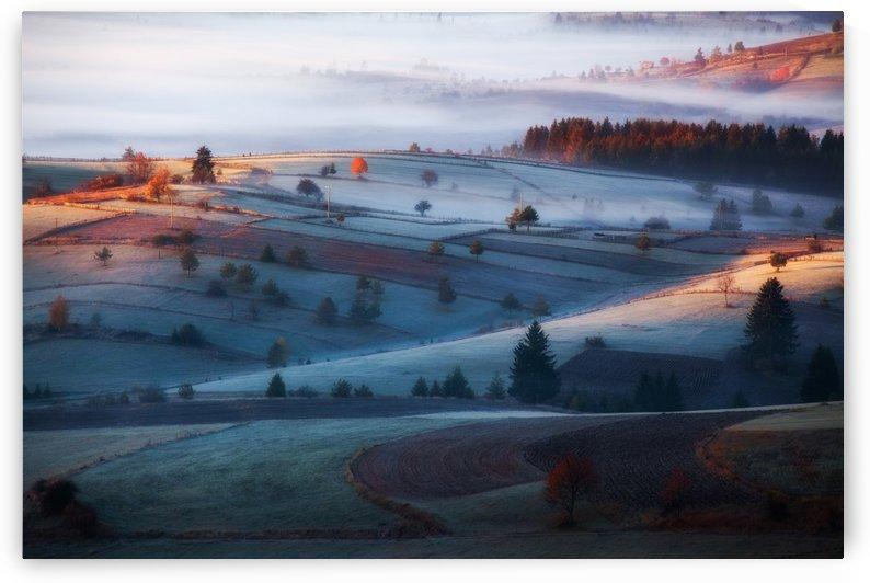 mist by 1x