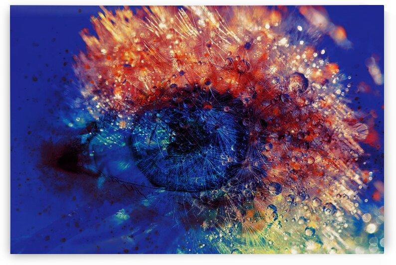 Vision by   Graine de lune   Mahine