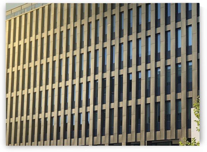 buildings windows  by Teofil Tiulkin