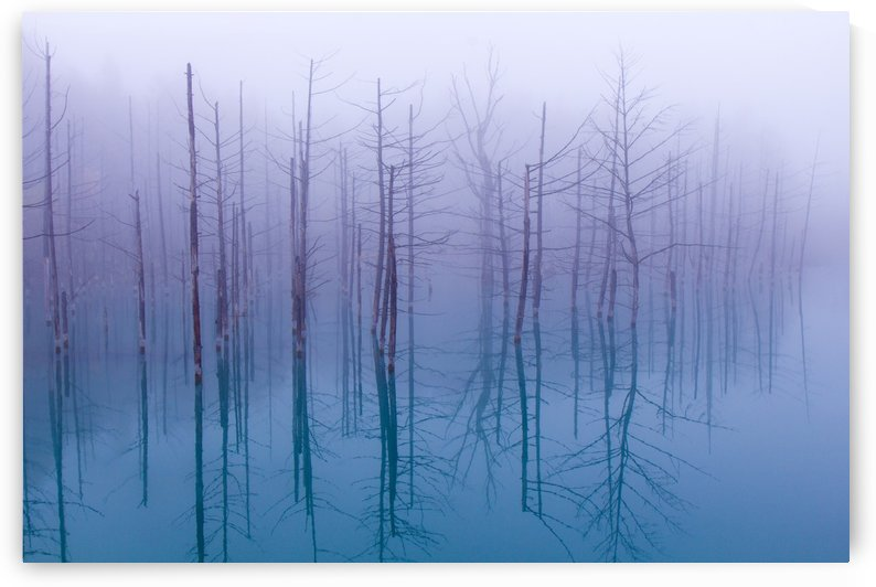 Misty Blue Pond by 1x