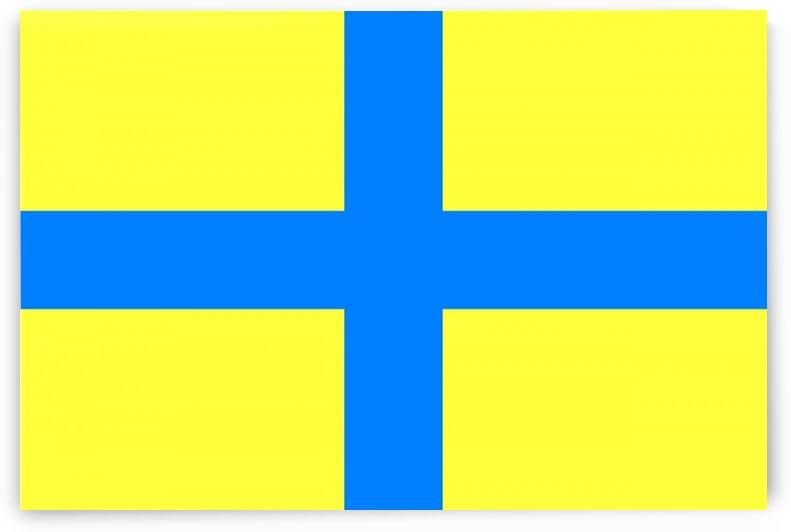 Parma flag by Tony Tudor