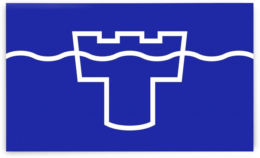 Tyne county flag by Tony Tudor