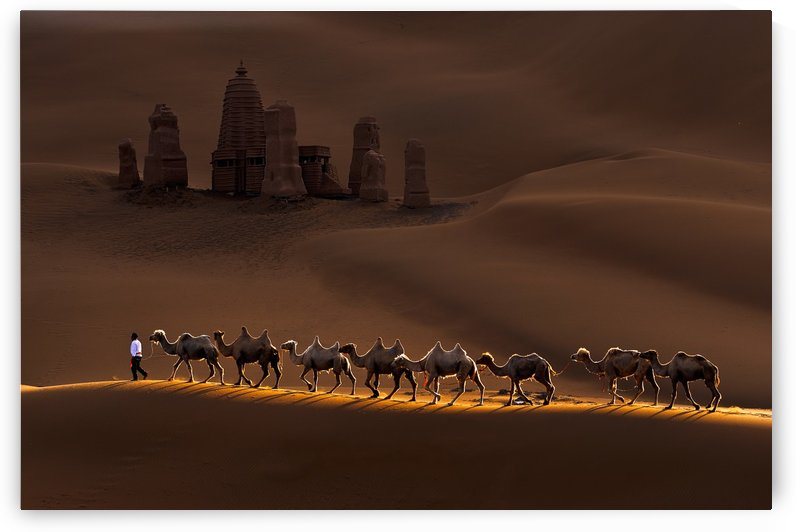 Castle and Camels by 1x