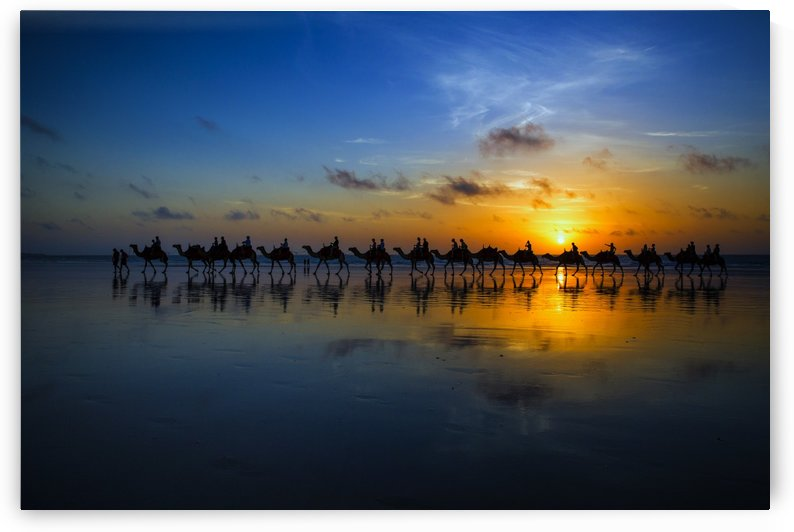 Sunset Camel Ride by Louise Wolbers  by 1x