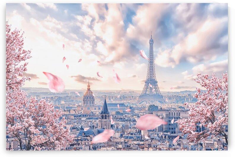 French sakura by Manjik Pictures