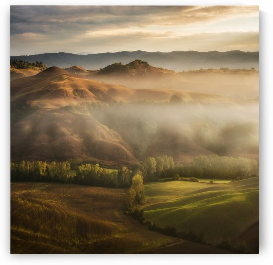 Mystical Waving Fields Tuscany by Jarek Pawlak  by 1x
