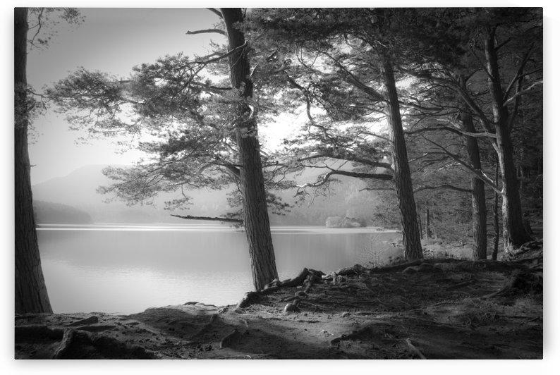 Loch an Eilein by 1x