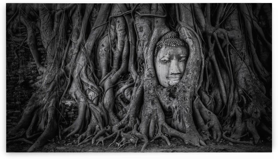 Ayutthaya by Manjik Pictures