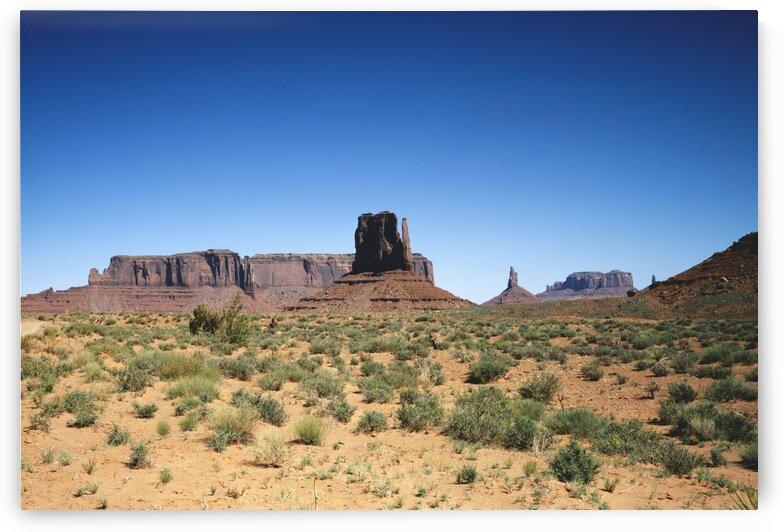 Desert Desolation Old Mammoth Road by Tony Tudor