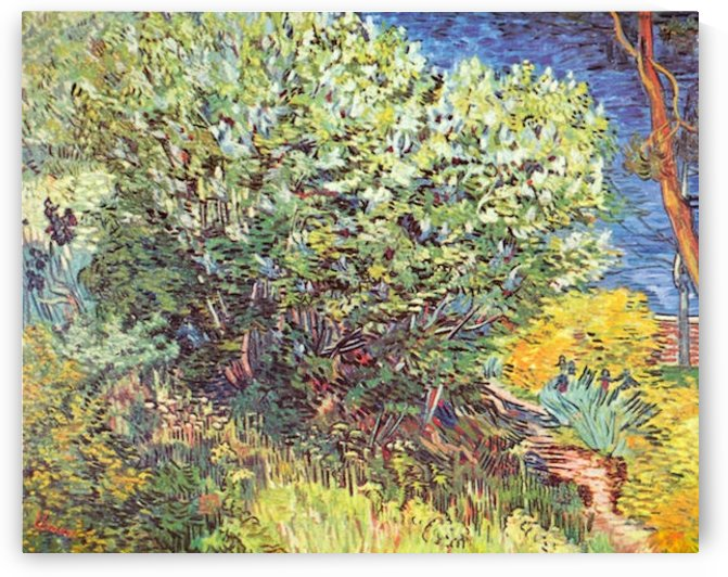 Slip Away by Van Gogh by Van Gogh