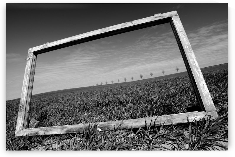A view through the window by Marcin Delektowski  by 1x