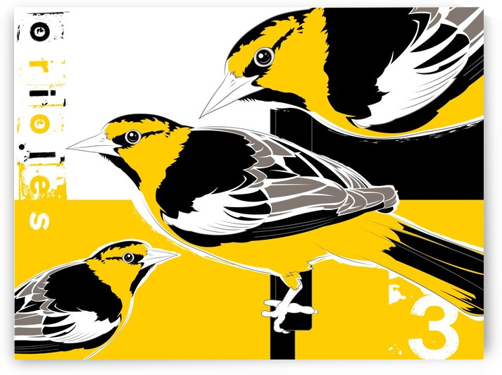 Orioles40x30 by Mike Monaghan