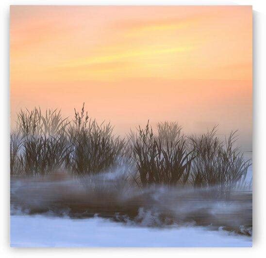 Frosty morning on a snow-covered pond. by Ievgeniia Bidiuk
