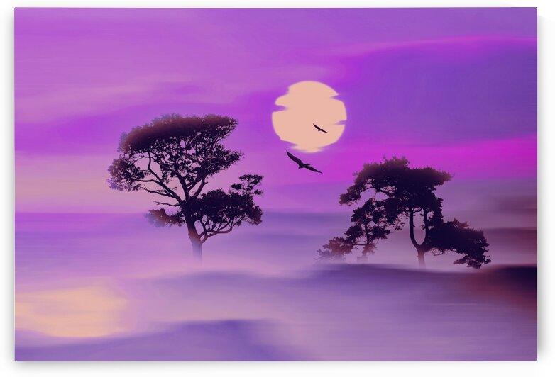 Purple sunset. by Ievgeniia Bidiuk
