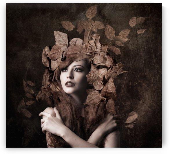 Artemis, daughter of Zeus by Faizal Besari  by 1x