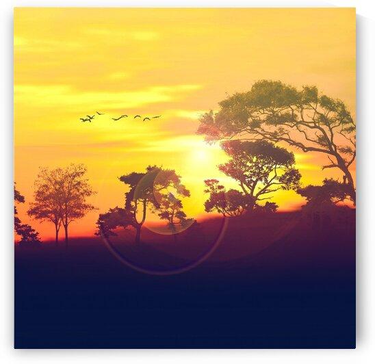 Sunset. by Ievgeniia Bidiuk