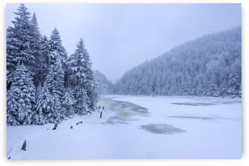 Winter Landscape by Jacques Frenette