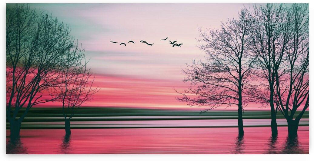Pink sunset. by Ievgeniia Bidiuk