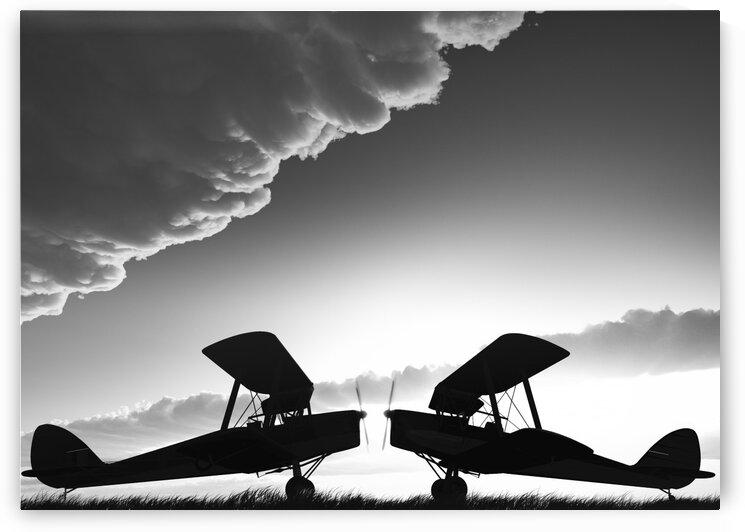 Biplanes Face Off by Bob Orsillo