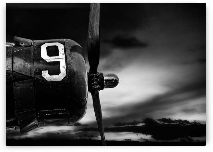 Number 9 Consolidated B24 by Bob Orsillo