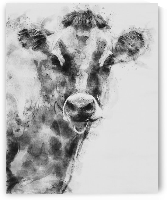 Dairy Cow Black and White by Bob Orsillo