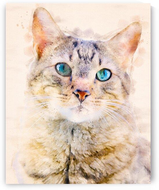 Dragon Li Hau cat by Bob Orsillo