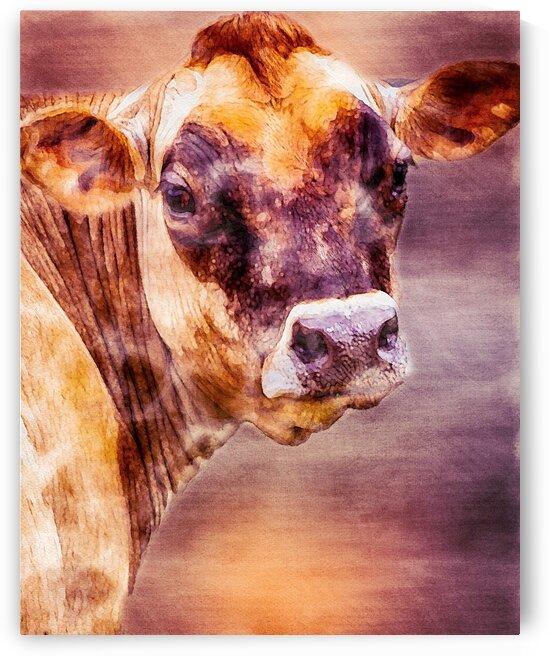 Beautiful Dairy Cow by Bob Orsillo