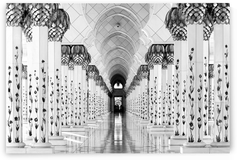 Sheik Zayed Mosque by 1x