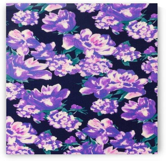 Poppy - Purple by Mutlu Topuz