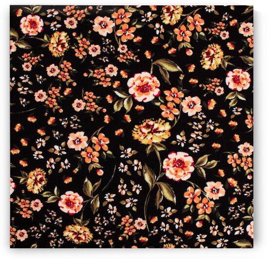 Carnations - Black by Mutlu Topuz