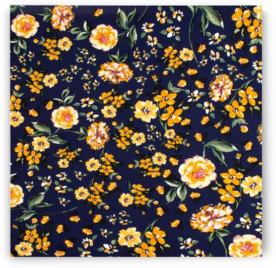 Carnations - Blue by Mutlu Topuz