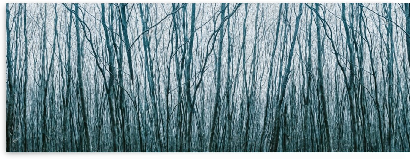 High branched thickets in the forest. Imitation of oil painting. by Ievgeniia Bidiuk