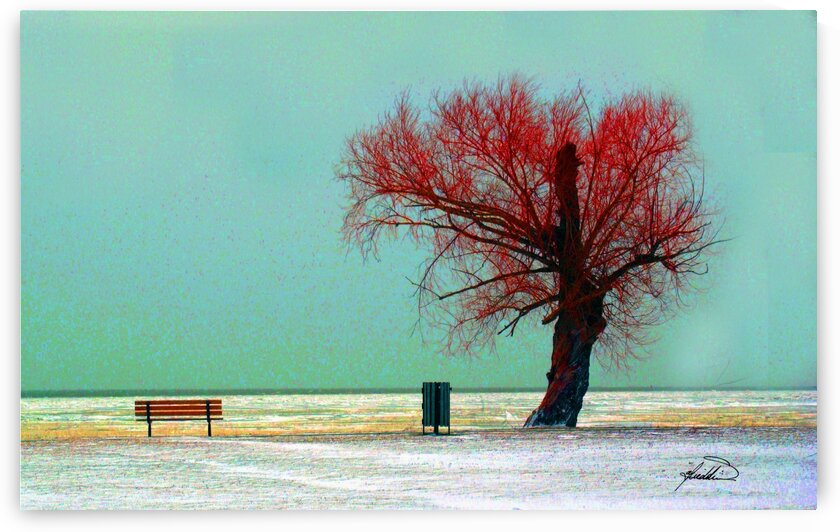 tree 1323 copy by michael safieddine