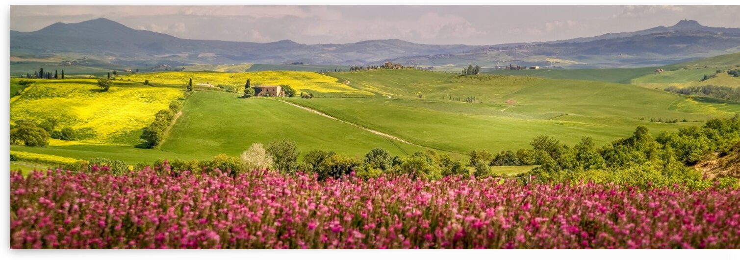 Tuscany 3 by Daniel Ouellette