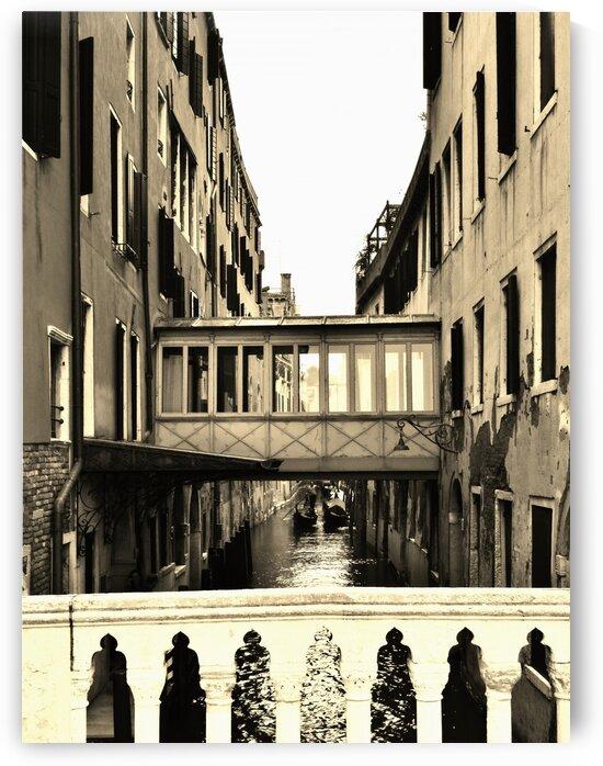 Venice by by Tara