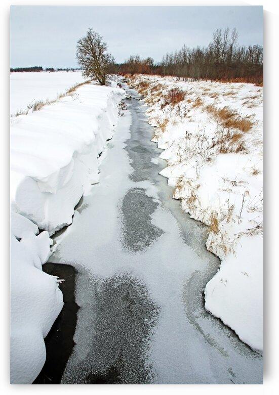 Rural Winter Creek by Deb Oppermann