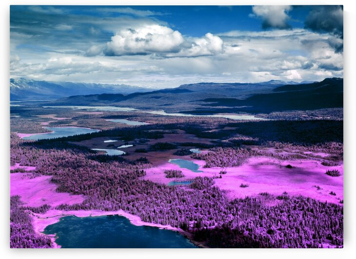 Alaska Denali   Infrared   Purple by ASAR STUDIOS