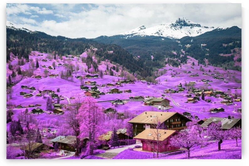 Alpine village  Interlaken  Switzerland   Infrared   Purple by ASAR STUDIOS