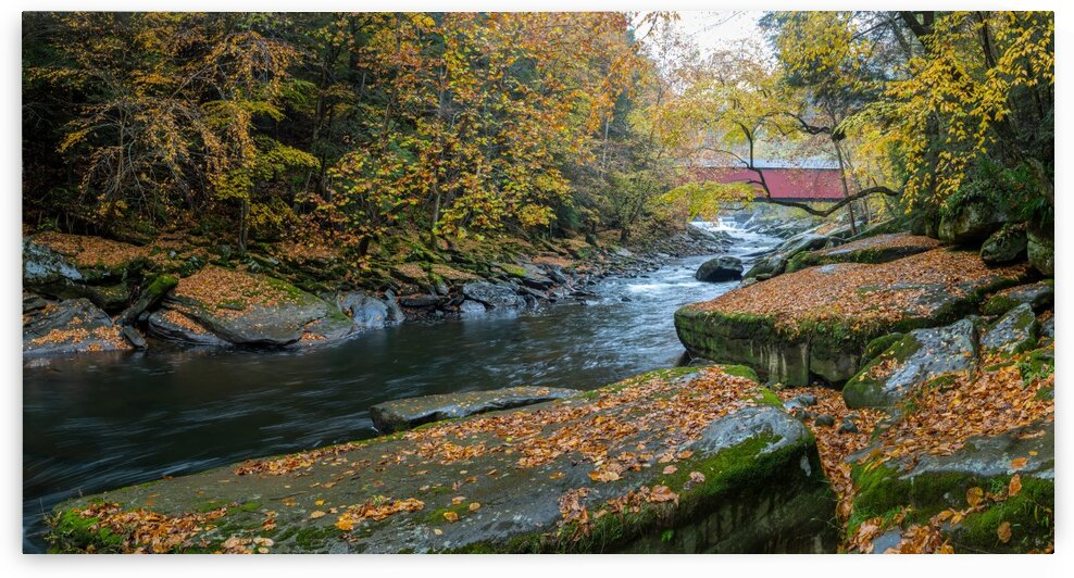 Covered Bridge apmi 1957 by Artistic Photography