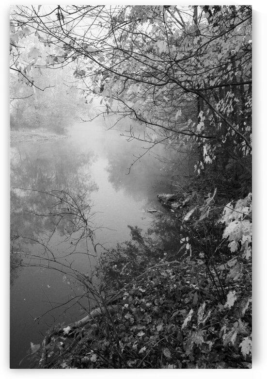 Morning Fog ap 1570 B&W by Artistic Photography