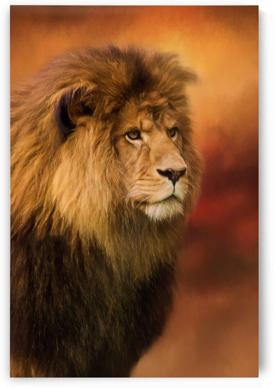 Lion Legacy - Lion Art by Jordan Blackstone by Jordan Blackstone