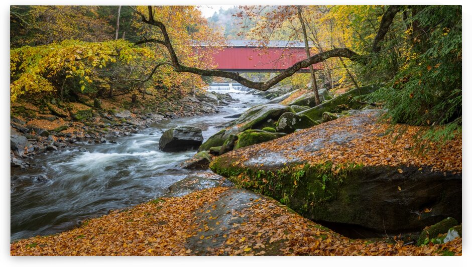 Covered Bridge apmi 1954 by Artistic Photography