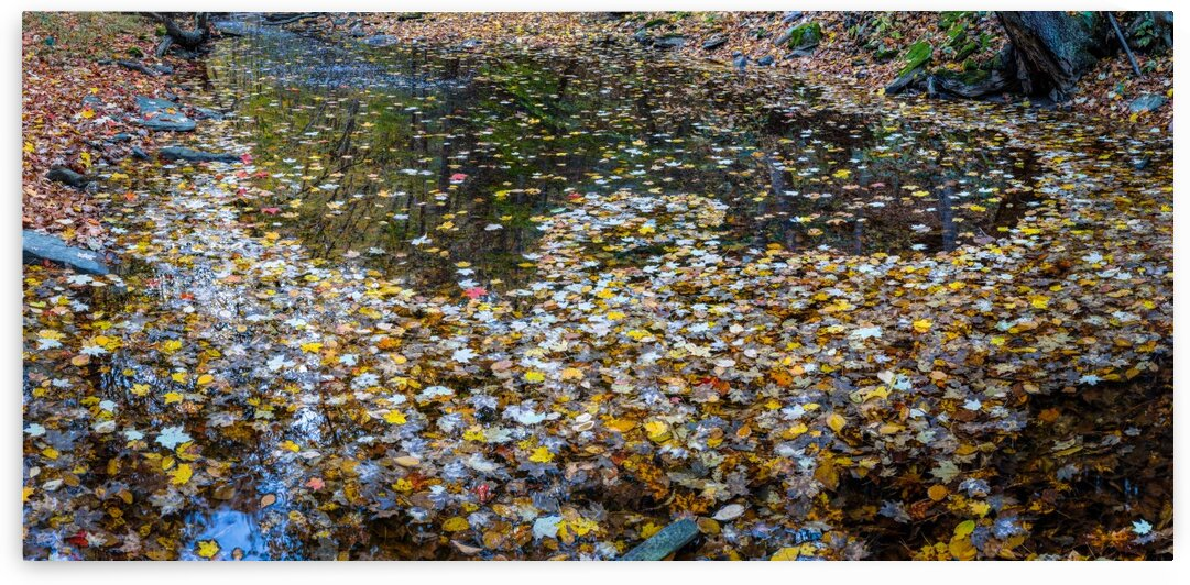 Reflecting Pool apmi 1916 by Artistic Photography