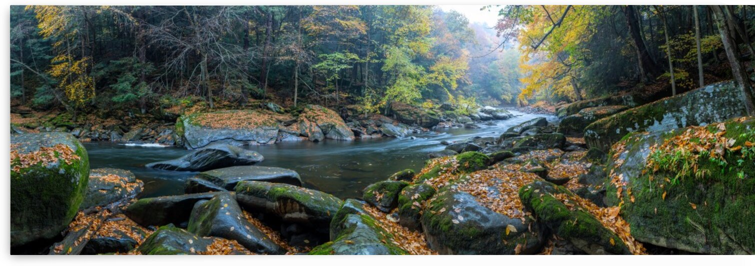 Slippery Rock Creek apmi 1931 by Artistic Photography